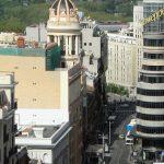 Control de plagas en Madrid y alrededores