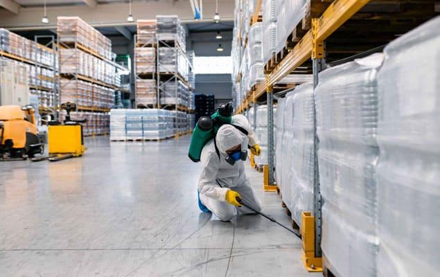 Plaga de cucarachas en naves industriales