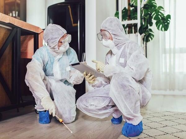 Certificado desinfeccion en hoteles