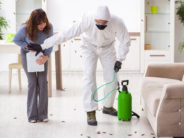 Exterminador de plagas en Chamberí