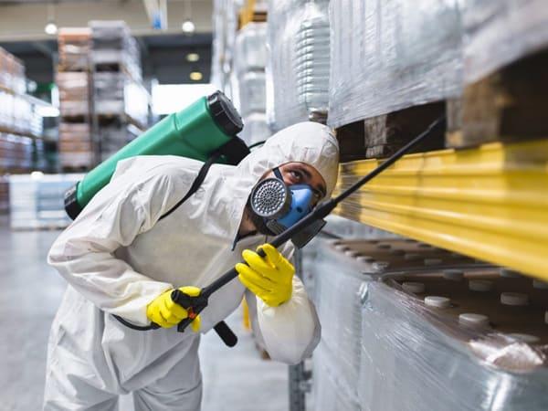Plaga de garrapatas en Naves industriales